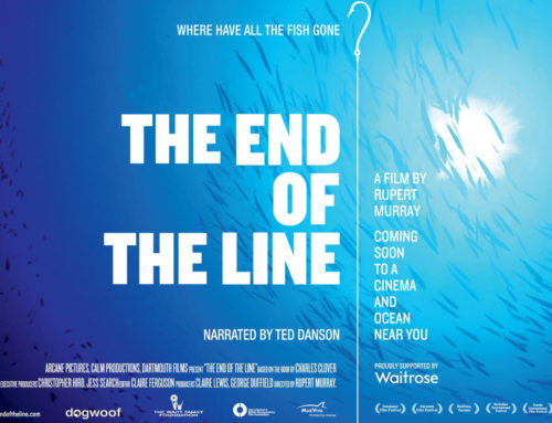 The End Of The Line – 5 Years On