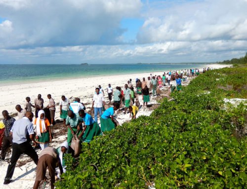 World Environment Day Beach Clean Up 2015