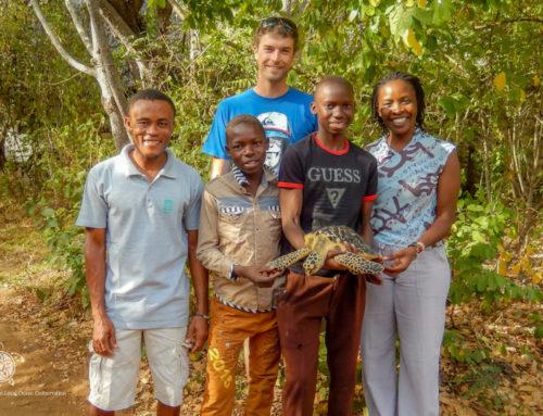 Amos and Elvis Save Bahati