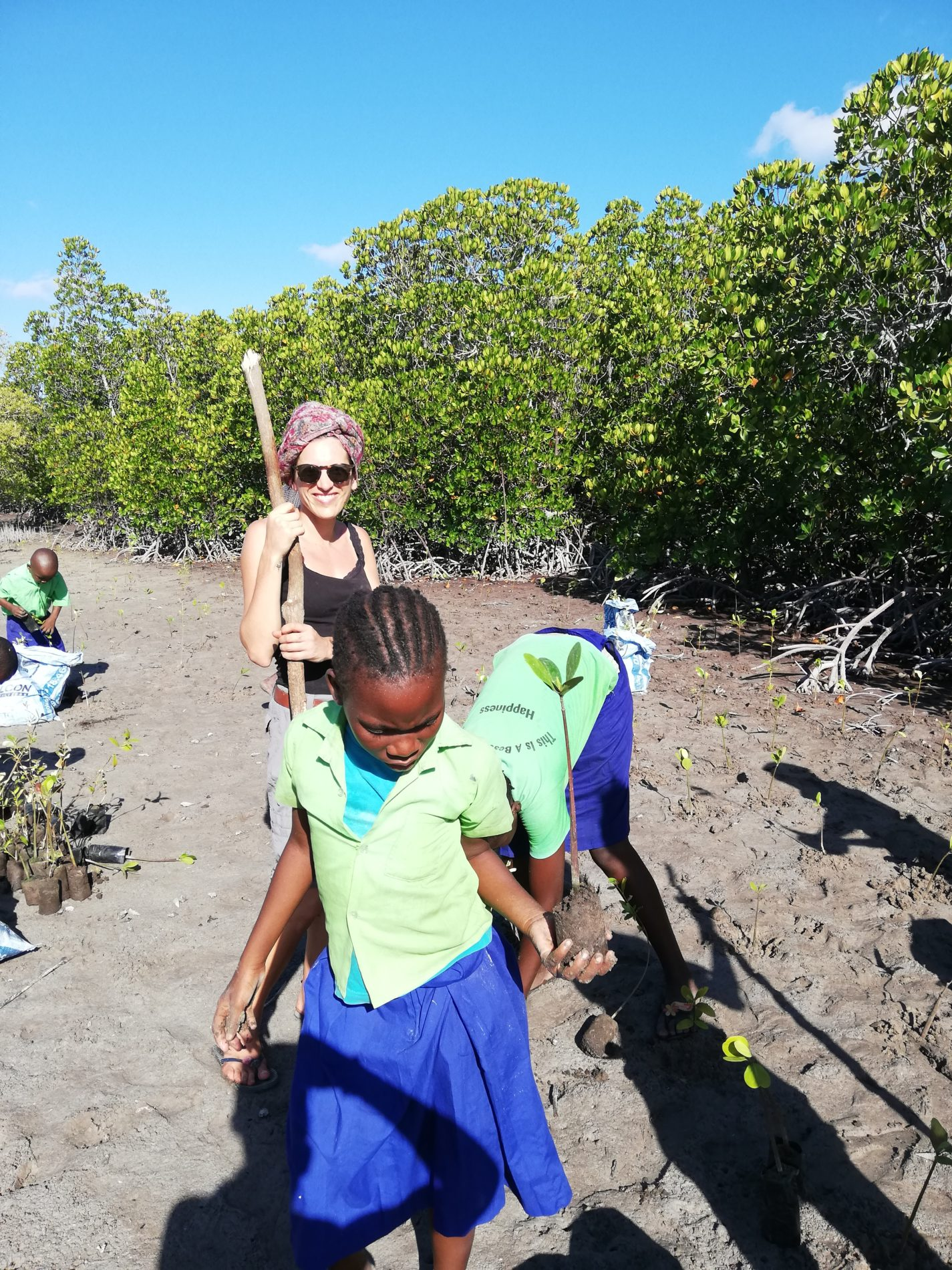 School Children Planting Mangrove Seedlings