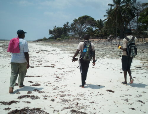 Now You Sea – Seeking Answers from Data with Ochieng'