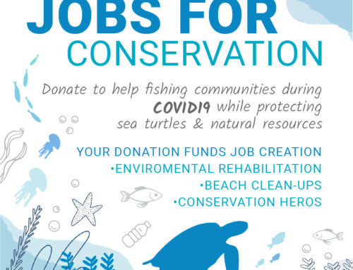 COVID19 relief – jobs for conservation